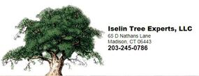 Iselin-tree-experts