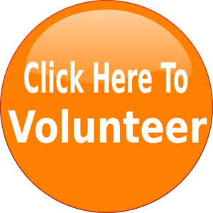 Click here to volunteer for the Harvest Festival