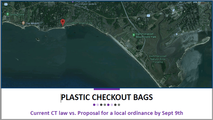 Plastic Checkout Bags- current CT law vs proposal for a local ordinance by Sept 9th